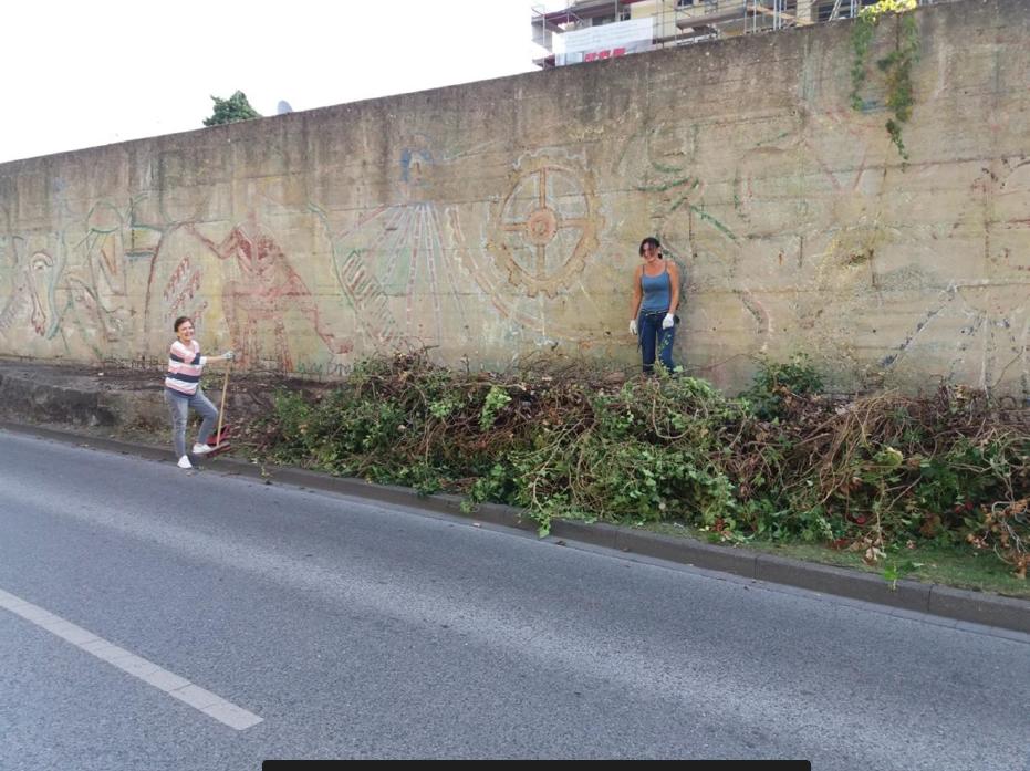 Graffito von Win Braun, Bereinigung vom Efeu